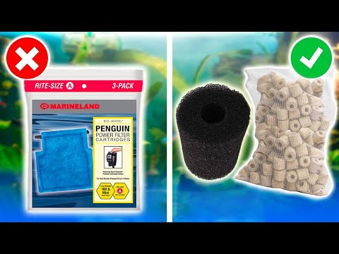 Aquarium Filter Tips and Tricks! Start Saving Money Now!