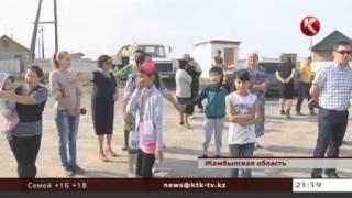 Жители жамбылского Шу требуют закрыть зловонную бойню