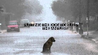 Putting The Dog To Sleep - The Antlers (Cover)