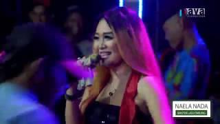 Lucu.. IWAK PEDA - Desy Parswati - NAELA NADA Live Gebang Kulon