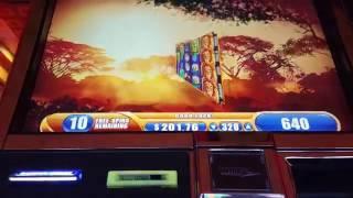 King of Africa Slot Machine Bonus - Max Bet Jackpot