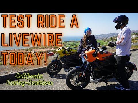 2020 Harley-Davidson® LiveWire™ Orange Fuse