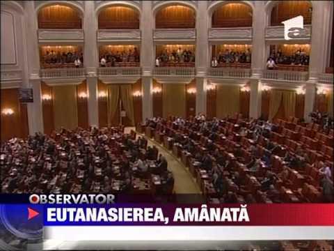 Legea privind eutanasierea cainilor a fost din nou amanata 31 MAI 2011