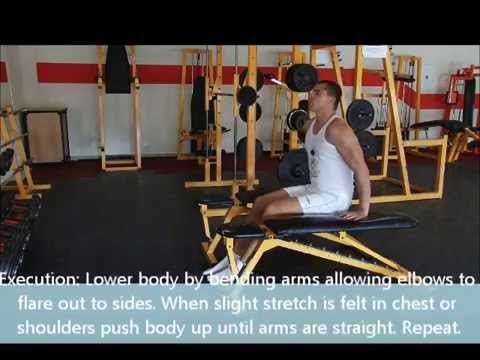 Chest Dip (bent knees between benches)