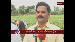 Bidar: Farmer Finds Success in Ginger Cultivation