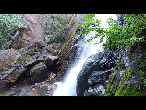 The titular falls of Falls Creek Falls