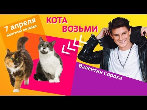 """Love Radio  на выставке """"Всем по котику"""""""