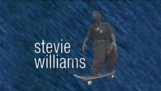 Video Vortex: Stevie Williams, The Reason   TransWorld SKATEboarding