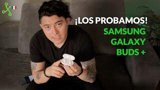 Samsung Galaxy Buds+, experiencia de uso: CÓMODOS, LIGEROS y con BUEN SONIDO