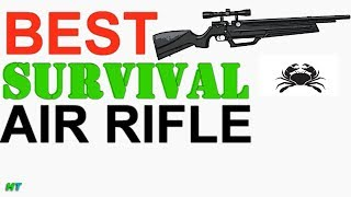BEST AIR RIFLE UNDER 400$! HUNTING-CAMPING-SURIVIVAL AIR RIFLE. American Tactical Nova Freedom-Fun