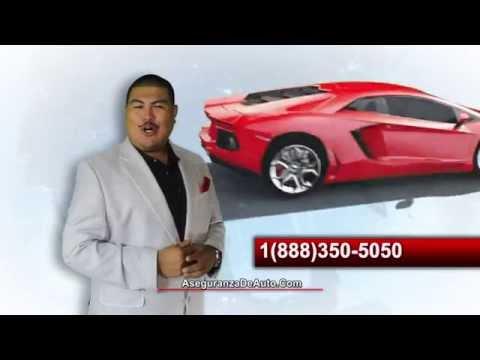 Auto International Insurance locations