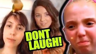 MY NEW SHOW / You Laugh You Lose