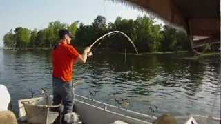Santee Cooper April crappie fishing...spider rigging