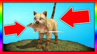 СИМУЛЯТОР Маленького КОТЕНКА #24 Челлендж с животными и котиками ДЕТСКИЕ ИГРЫ