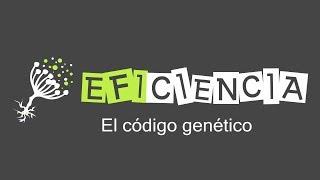 Científicos descubren segundo código genético escondido en el ADN