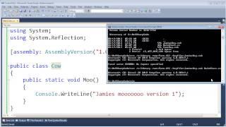 .NET GAC Folder