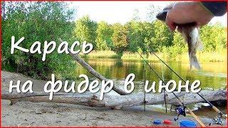 Как ловля рыбы на волге в июне