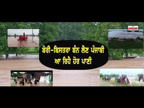 Flood in Punjab | Bhakra Dam, Satluj River | Special Story | Hamdard Tv |