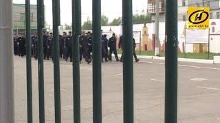 В Беларуси могут объявить амнистию для 2 тысяч человек