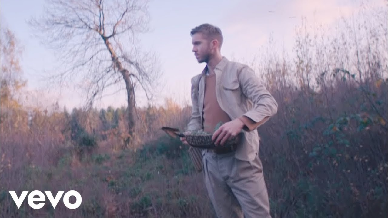 Calvin Harris, Rag'n'Bone Man — Giant