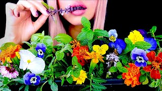 ASMR Edible Flower Garden, Dirt, Worms (Prank) Eating Sounds 먹방