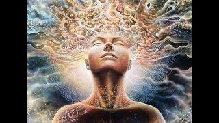 Vem Força Da Ayahuasca - Sagrada Tradição Tribo Do Amor
