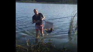Отчет о рыбалка в липецкой на карпа