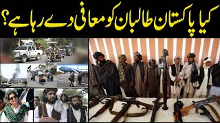Sumaira Khan|| Is Pakistan extending amnesty to Taliban?? What's the reality account??