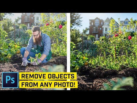 How to Remove ANYTHING From a Photo in Photoshop (5 WAYS!)