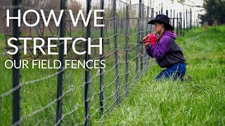 STRETCH FIELD FENCE TIGHT | How WE like to do it.