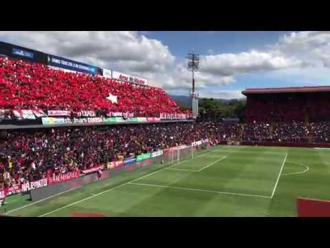 """Mosaico Liga Deportiva Alajuelense final 2018-4K"" Barra: La 12 • Club: Alajuelense"