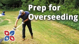 Do My Own Lawn Care - Prep. for Overseeding - Ep28