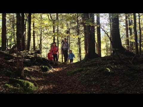 Urlaub in Ruhpolding - Sommer- & Winteraktivitäten in den Bayerischen Alpen