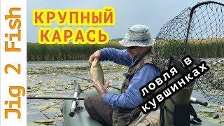 Рыбалка карась в камышах и кувшинках