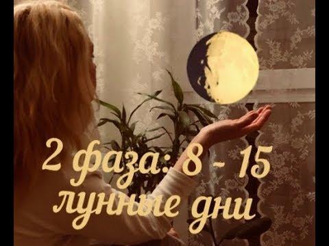 Война в украине прогноз астрологов