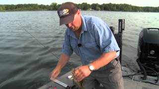 Fish Ed 031 High Pressure Crappies on Crankbaits