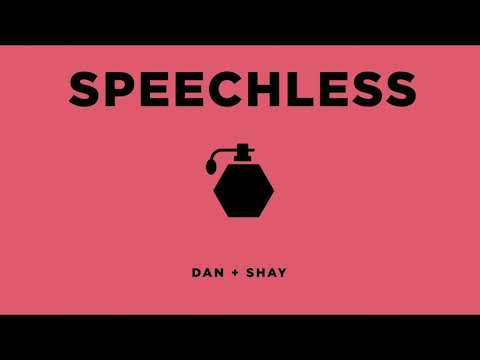Speechless - Dan + Shay (Instrumental | Lower Key)