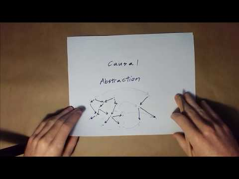 Causal Abstraction Intro