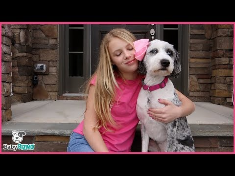 HAPPIER PARODY Marshmello ft. Bastille - Mom and Teen Music Video (видео)