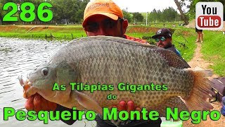 Programa Fishingtur na TV 286 - Pesqueiro Monte Negro