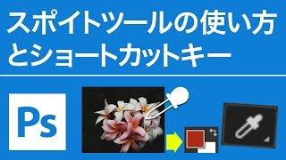 Photoshop 無料講座 スポイトツールの使い方とショートカット