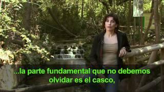 Video del alojamiento El Rincón de San Benito