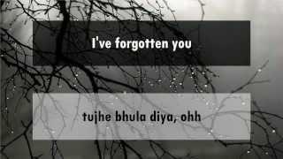 Tujhe Bhula Diya - Anjaana Anjaani [hindi lyrics - english