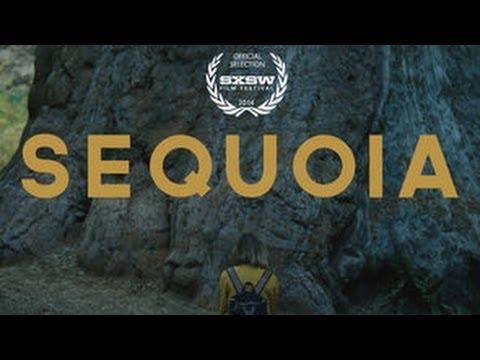 Sequoia (Trailer)