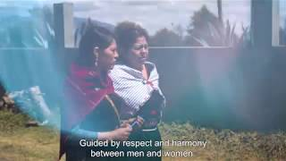 Legislación para proteger a las sobrevivientes de violencia en Ecuador
