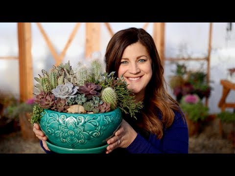 How I Make a Succulent Arrangement! 🌵😊 // Garden Answer