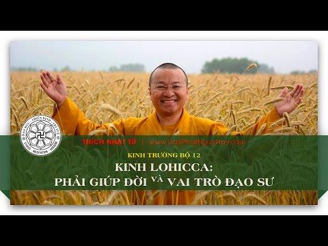 Kinh Trường bộ 12 – Kinh Lohicca – Phải giúp đời và vai trò đạo sư (10/06/2014) - Thích Nhật Từ