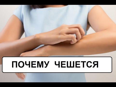 Гомеопатические средства от лямблий у
