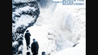 Echo & The Bunnymen - Porcupine (full album)