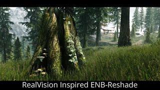 Skyrim SE Mods - RealVision Inspired ENB Reshade